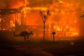 Australia Fires Continue to Blaze Despite Rainstorms